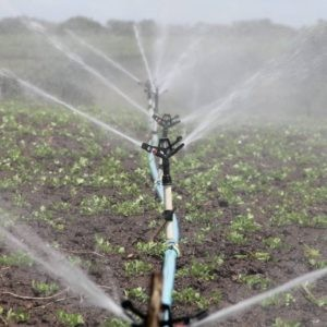 Agua clorada para riego