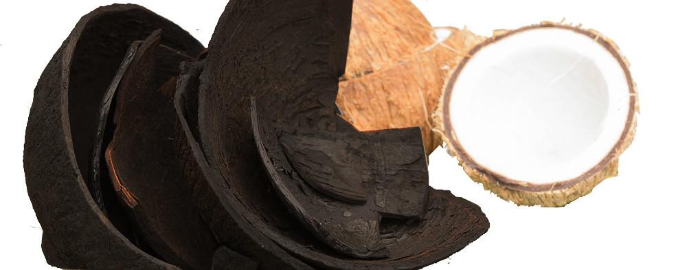 Carbón activado de concha de coco